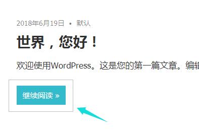 wordpress汉化后的实例